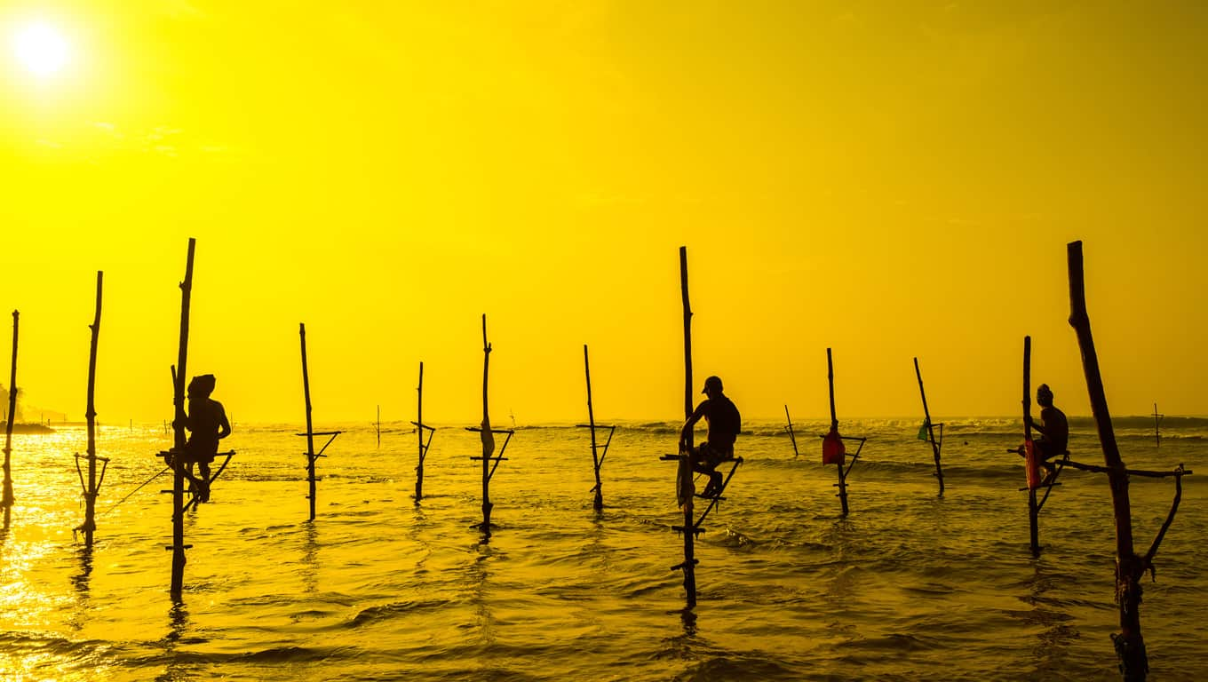 Traditional Fishermen - Sri Lanka